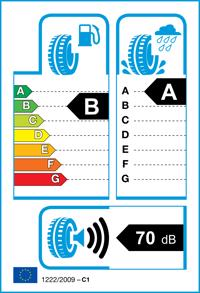 Etichetta per gomma: DUNLOP, BLURESP. 205/50 R17 89HR Estive