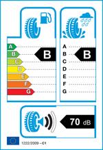 Etichetta per gomma: CST, MARQUIS MR61 205/65 R15 94V Estive