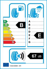 Etichetta per gomma: GOODYEAR, EfficientGrip DA 205/55 R16 91H Estive