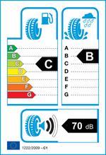 Etichetta per gomma: TRISTAR, ECOPOWER 4 205/70 R15 96T Estive