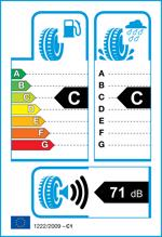 Etichetta per gomma: NANKANG, Winter Activa SV-3 XL 205/55 R16 94H Invernali